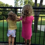 "My little ""Blondies"" watching the golfers with me"