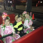 Fall festival...bees and flowers